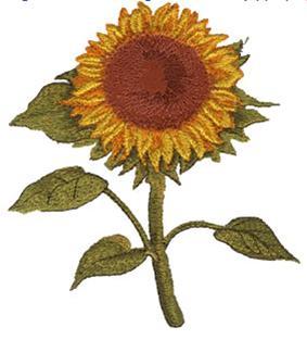 Fleur du soleil - Fleur du soleil ...